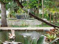 Майами. Ботанический сад Фэйрчайлд.