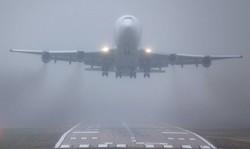 """Из-за тумана самолёты не могли сесть в """"Кольцово"""""""