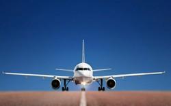Гражданка Индии скончалась на борту самолета, экстренно севшего в Москве