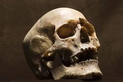 В аэропорту Рима задержали пассажира с человеческим черепом в багаже