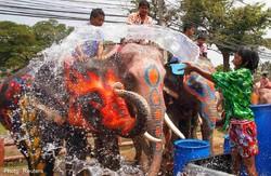 В Таиланде начали праздновать Новый год