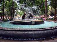 Койоакан — город в городе