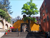 Прогулки по центру Мехико