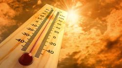 Из-за аномальной жары Ближний Восток может стать непригодным для жизни