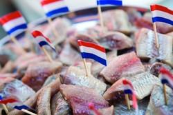 Самые интересные события Нидерландов в июне