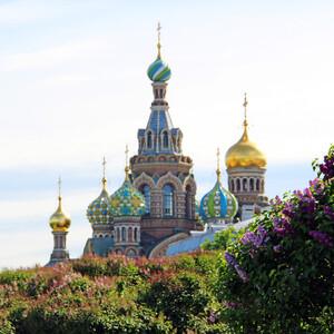 Лето в Петербурге.