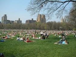 При взрыве в Центральном парке Нью-Йорка пострадал турист