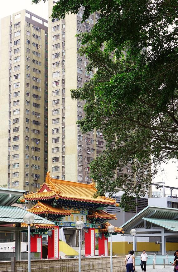 К ногам бетонного кошмара прижимается изящная красота - в Гонконге это часто встречаешь.