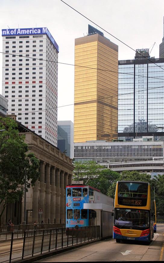 А высокие трамваи здесь дружат с высокими автобусами. Они переговариваются на остановках и играют в догонялки на улицах города.