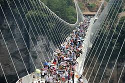 Стеклянный мост-рекордсмен проработал меньше двух недель