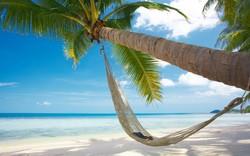 Турпоток из РФ в Доминикану вырос в 4 раза
