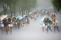 "На Тайване эвакуируют туристов из-за тайфуна ""Меги"""