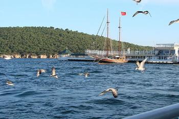 Видео Стамбул Сегодня (2 14 Турция Видео - YouTube