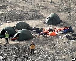 В Норвегии медведь напал на палаточный лагерь, один турист погиб