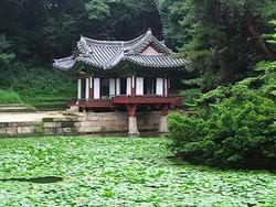 Дворец Чхандоккун в Сеуле можно будет посещать ежедневно