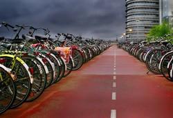 Вена предлагает бесплатный прокат велосипедов