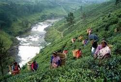 Шри-Ланка возводит визовый барьер