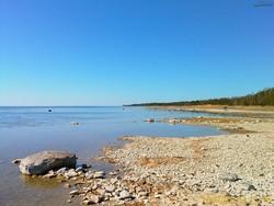 Пляжи Эстонии не пригодны для использования