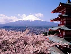Токио выдаст туристам бесплатные авиабилеты в Японию