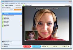 В Шереметьево возможна регистрация через Skype