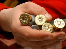 Гоа: россиянин арестован за охотничий патрон в багаже