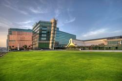 В Дубае появился отель со «встроенной» коллекцией современного искусства