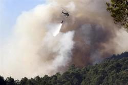 Испанию и Хорватию продолжают беспокоить лесные пожары