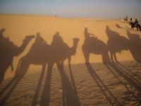 Тунис. 2000 км по стране за три дня.