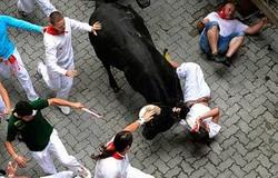 Во время забега быков в Памплоне несколько туристов получили тяжелые ранения