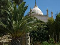Тунис---столица Туниса и призрак Карфагена.