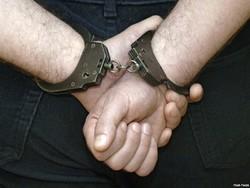 Полиция скрутила в Шереметьево очередного авиадебошира