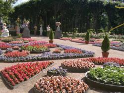 Павловск и Лаппеенранта подружились музеями