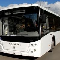 Автобусы в Сочи опаздывают из-за досмотров