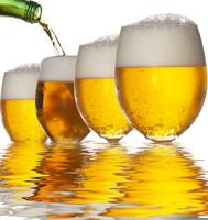 В Нидерландах тесты на алкоголь собираются применять и к пешеходам