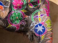 Джайпрурские слоники