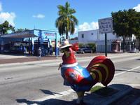 Маленькая Гавана