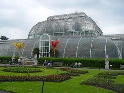 Королевские ботанические сады «расцветут» под Рождество