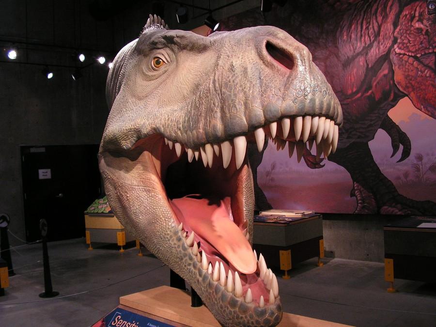 Как сделать из динозавра