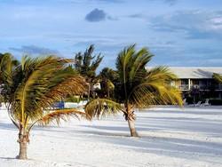 Несколько круизных компаний перестали водить экскурсии на Багамы