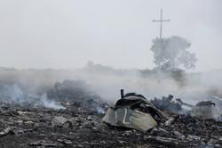 В Сети появляются шокирующие версии крушения «Боинга» на Украине