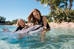 «Дискавери Ков» в США признан лучшим парком развлечений в мире