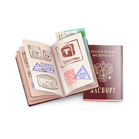 Посольство США в Москве приостановило выдачу виз