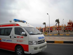 Около 40 человек погибло в крупном ДТП в Египте