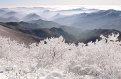 В Корее пройдет фестиваль снега