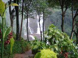 Шри-Ланка открывает два Национальных парка