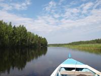 Петроглифы Онежского озера.