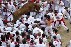 Пострадали участники забега быков в Испании