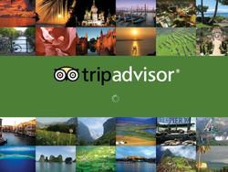 С Trip Advisor был снят штраф за фальшивые отзывы