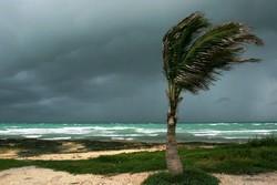 На Карибы и Багамы надвигается супершторм «Эрика»