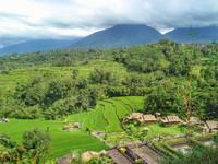 Бали. Райские кущи.